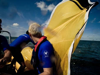 Kite Rescue